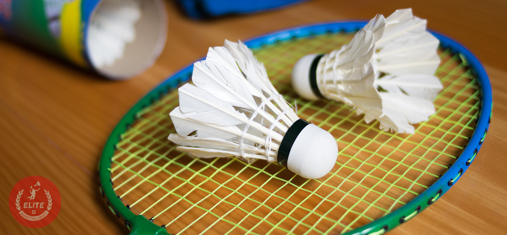Where to play badminton torronto